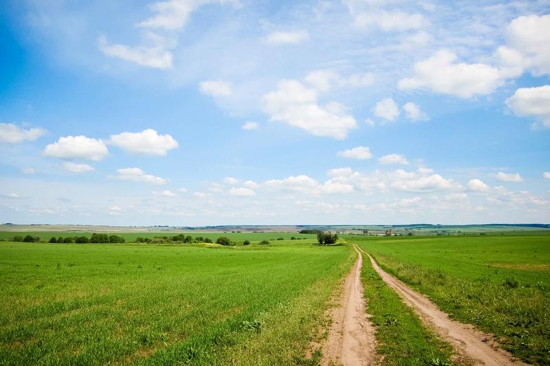 У області незаконно використовували більше 150 гектарів землі державної власності