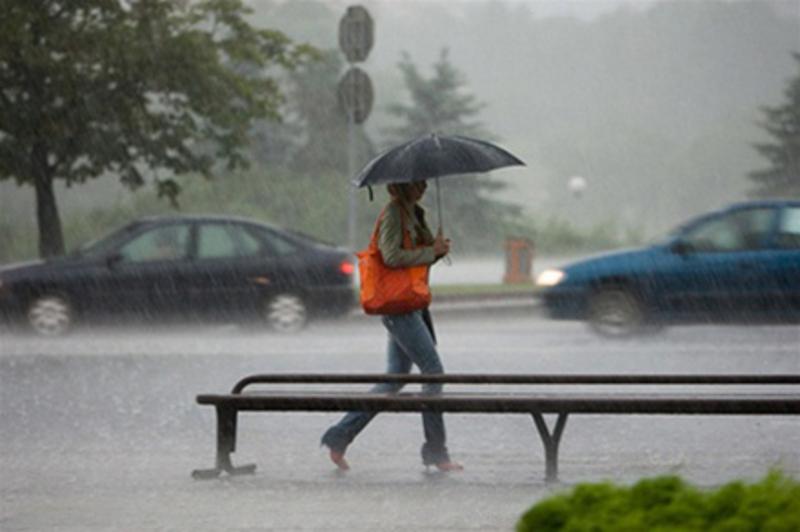 Готуйте парасольки
