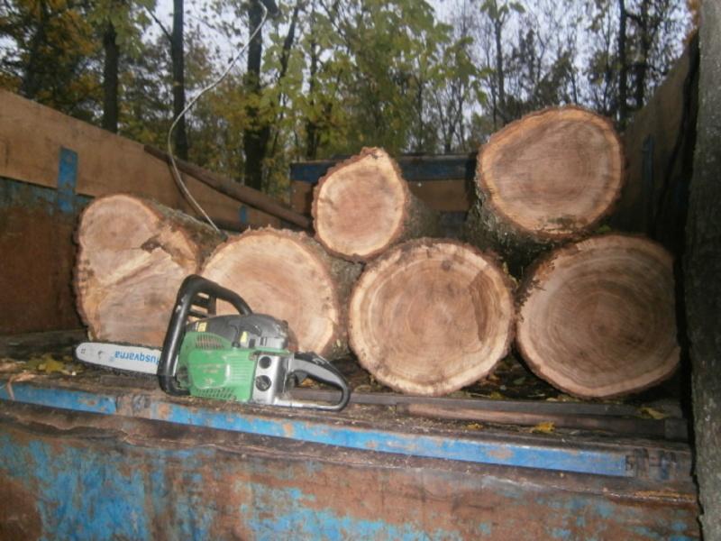Під час санкціонованих обшуків на господарстві трьох підозрюваних виявлено та вилучено незаконно порубану деревину.