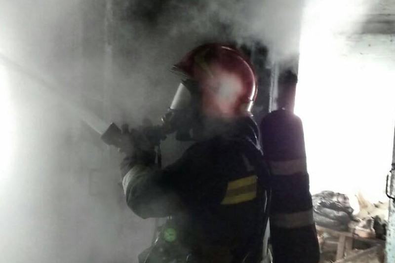 Вогнеборцям вдалося ліквідувати пожежу та вчасно запобігли їх розповсюдженню
