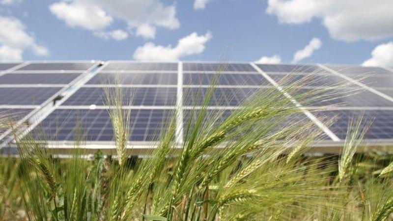 Загальна потужність СЕС, які планують ввести в експлуатацію, складе 370 МВт