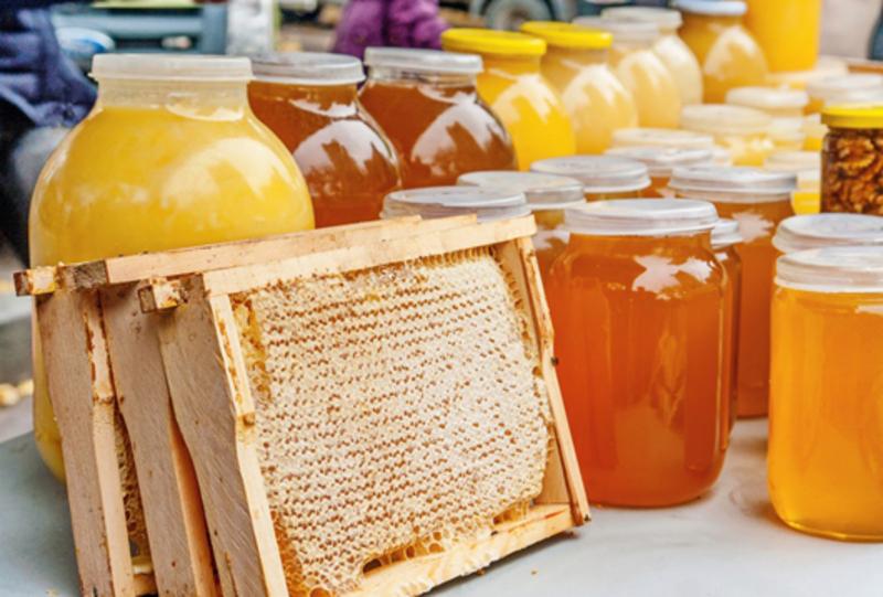 На Хмельниччині живуть крадії, які полюбляють мед