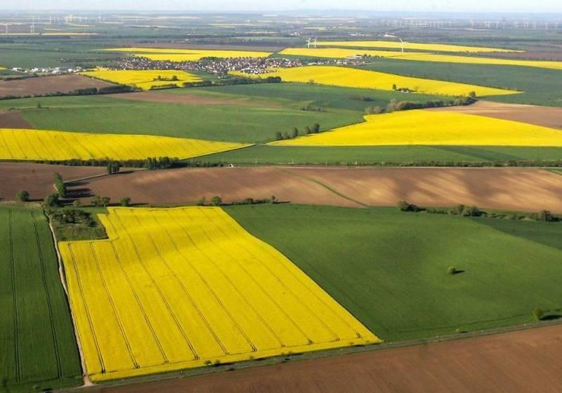 Ще 17 ОТГ отримали акти про передачу земельних ділянок сільськогосподарського призначення державної власності у комунальну власність