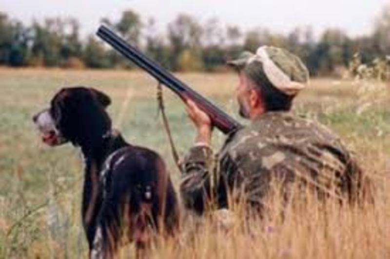 8 серпня відкривається сезон полювання на пернату дичину