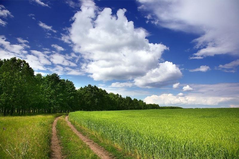 На Хмельниччині за втручання прокуратури визнано недійсним договір оренди 80 га землі вартістю близько третини мільйона гривень