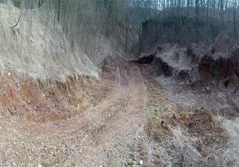 Упродовж 2016 року службові особи підприємства займалися незаконним видобутком та реалізацією сапонітових глин