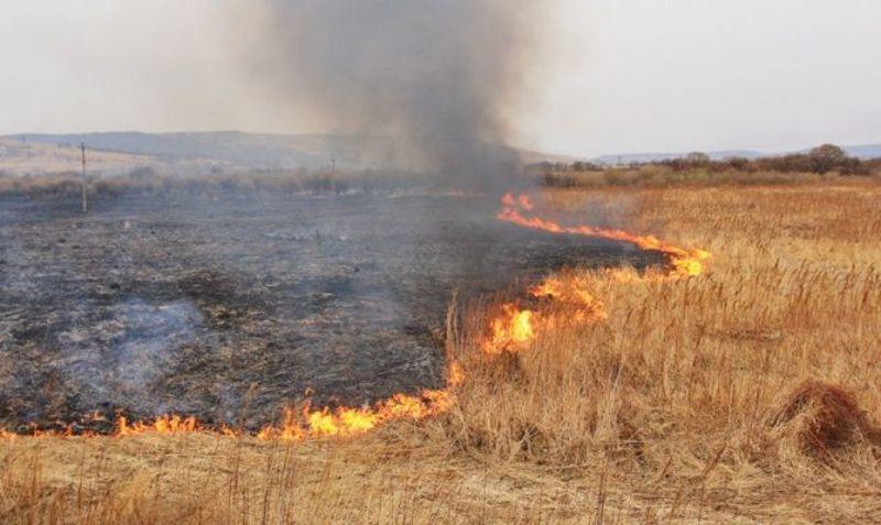 У ДСНС закликають громадян бути обачними при поводженні в вогнем. Особливо у спекотні літні дні