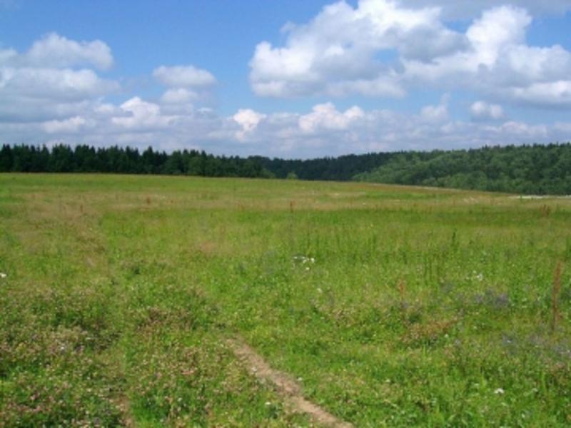 Державі повернуто землю вартістю майже 770 тисяч гривень.