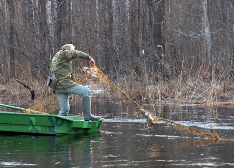 За вилов риби під час нерестового періоду у заборонених місцях стягуватимуть з порушників штраф у сумі від 34-170 гривень.