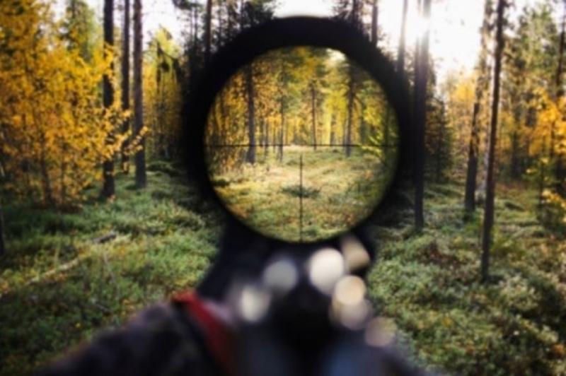Лісівники перешкоджають браконьєрству