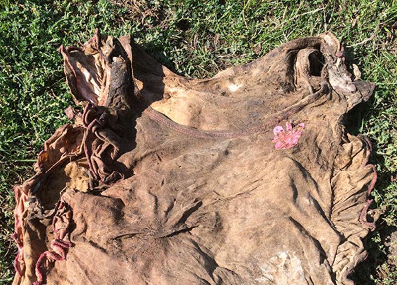 Дитина, тіло якої знайшли, була одягена в футболку рожевого кольору.
