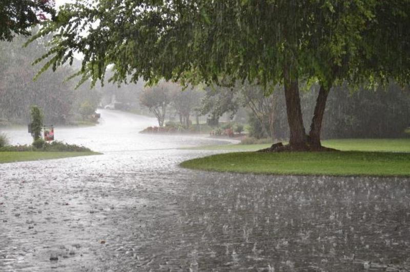 Найближчі три дні прогнозують дощову погоду і похолодання