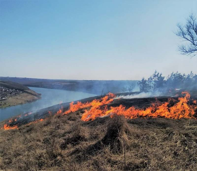 Вогонь встиг знищити траву на площі понад 4 гектари