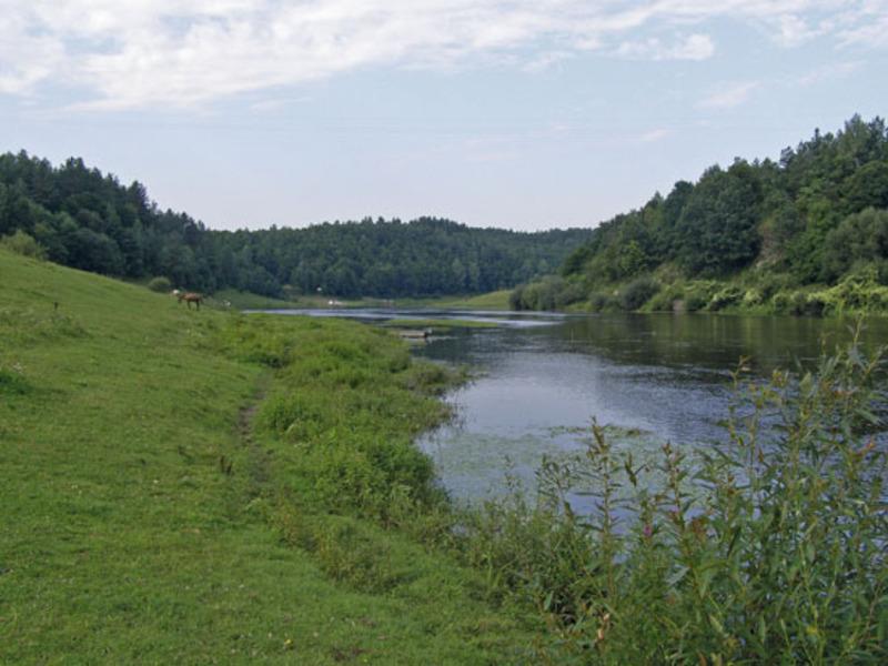 Незаконно орендовані землі водного фонду повернули у власність держави