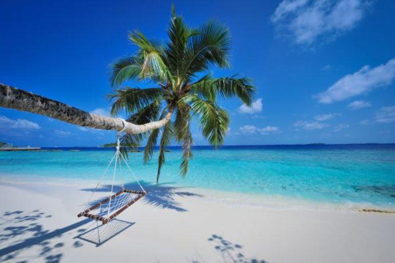 Поліція Хмельниччини розшукує зловмисників, які під приводом оформлення туристичної путівки на Мальдіви ошукали жителя Кам'янець-Подільського