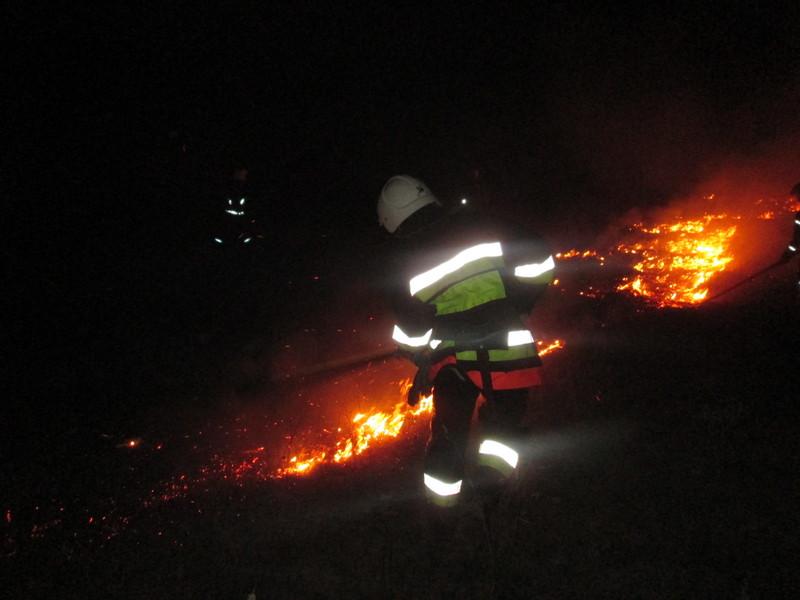 Пізно увечері пожежі були зафіксовані на Теофіпольщині та Полонщині