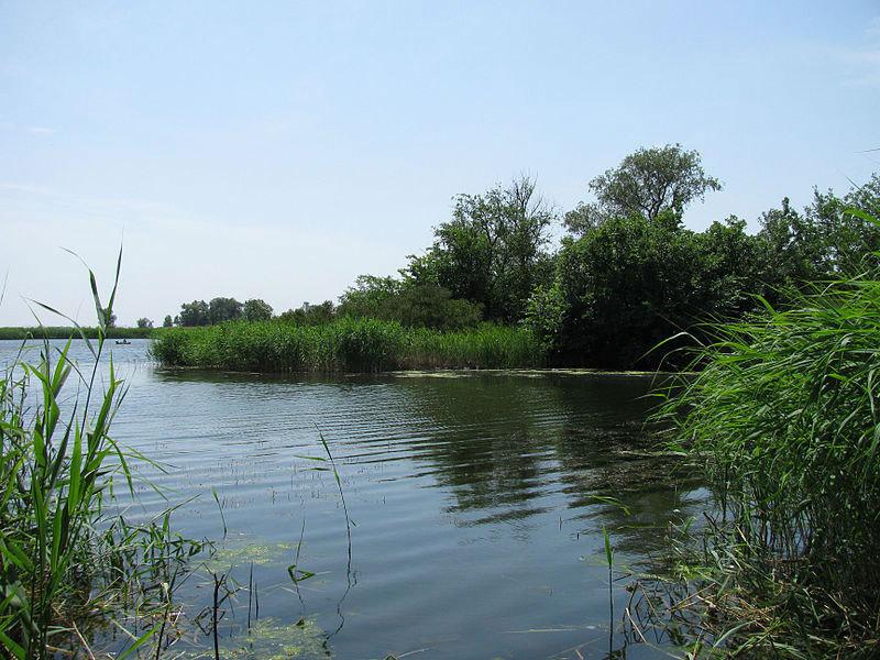 Тіло чоловіка було виявлене у місцевій водоймі