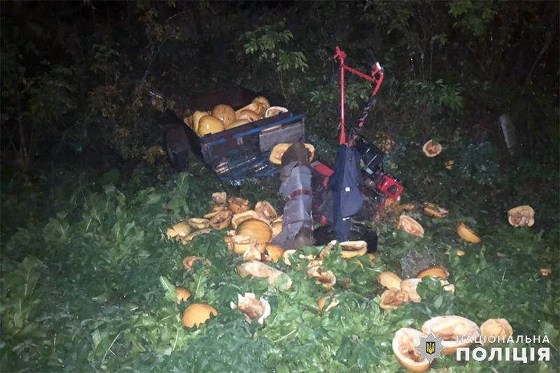 Аварія сталася в селі Кам\'янка Кам\'янець-Подільського району