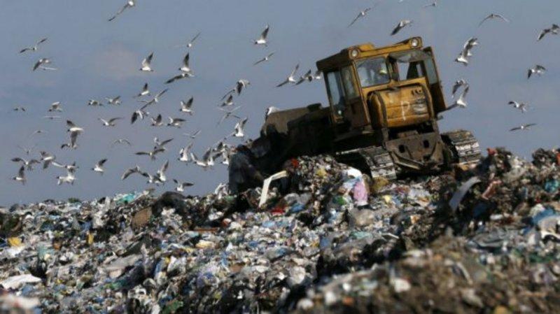 На сміттєзвалищі проводитимуть дослідження