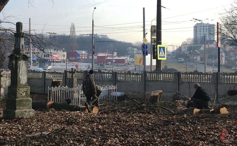 Комунальники обрізають дерева на старому кладовищі