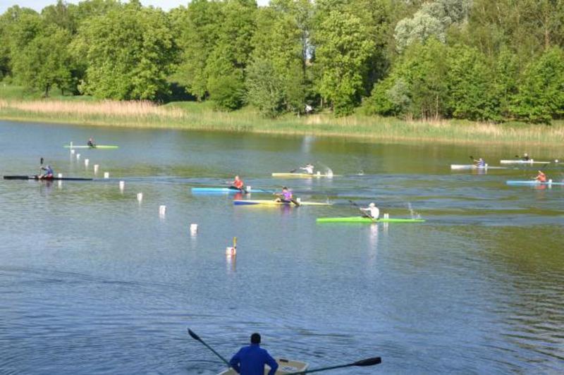 Участь у Кубку Федерації з веслування взяли 251 спортсмен