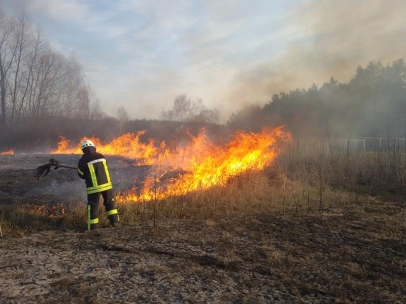Рятувальники застерігають громадян не провокувати пожежі у екосистемах