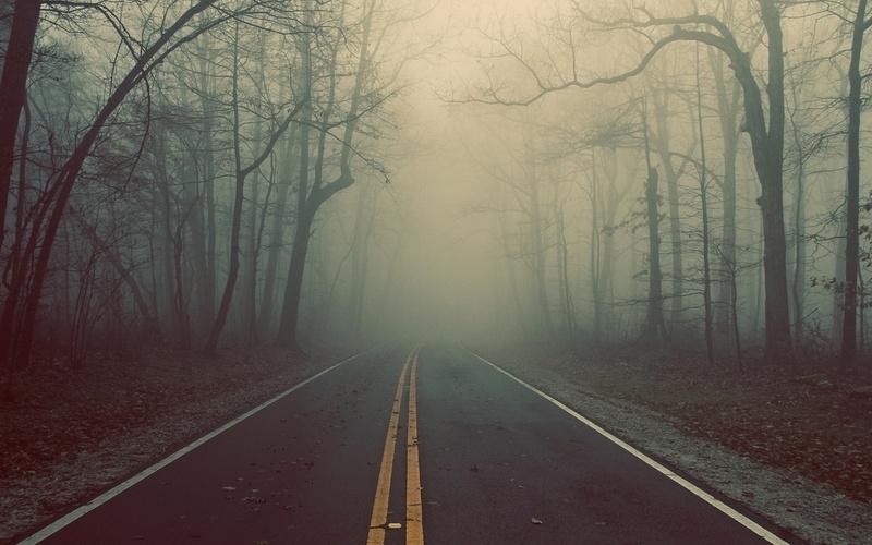 Подолян просять дотримуватися правил безпечної поведінки на автошляхах