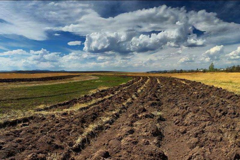 Мораторій на продаж сільськогосподарських земель поки що триває до початку наступного року
