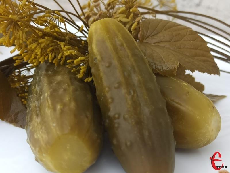 Заквашують у селі Лисець огірки, переважно, за давніми рецептами та в дубових бочках