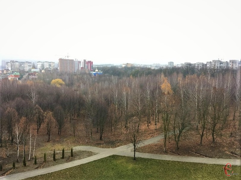 Поки парк Подільський більше схожий на ліс