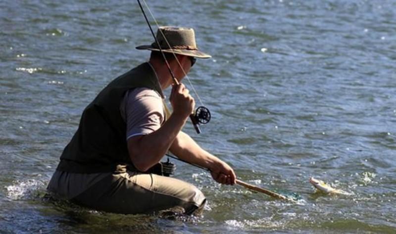 Браконьєри завдали рибному господарству збитків на суму понад 100 тисяч гривень