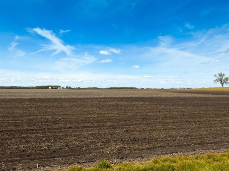У Кам'янець-Подільському районі фермери без будь-яких документів обробляють землю