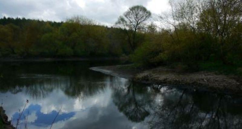 Екоінспекція підготувала позов до суду через забруднення річки