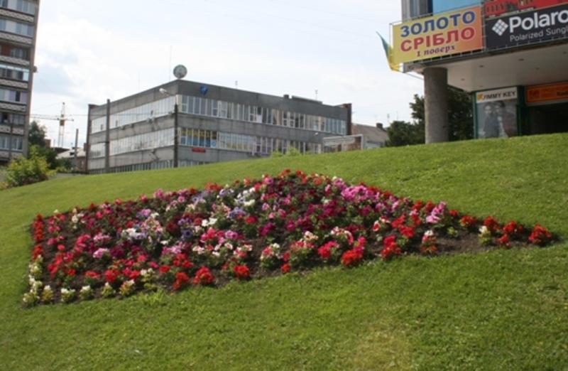 До кінця року в Хмельницькому має з'явитися схема озеленення