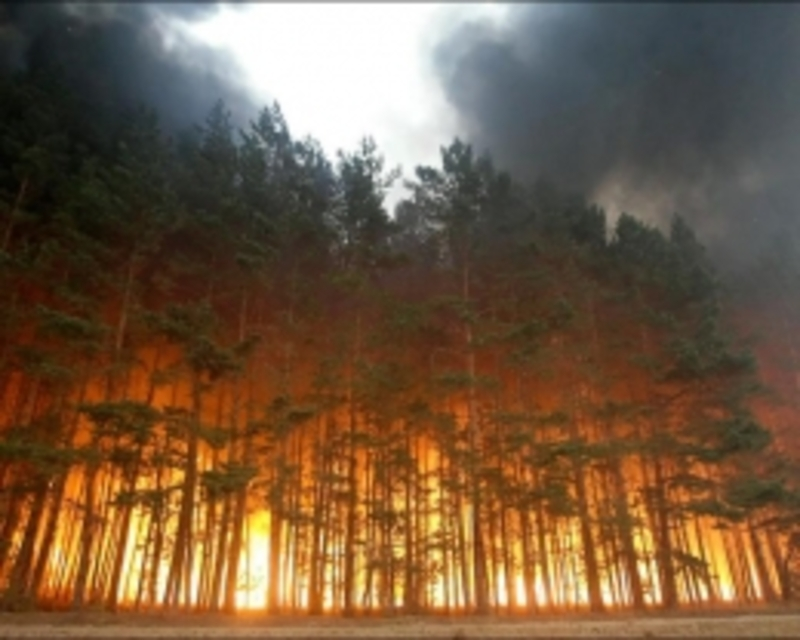 На Хмельниччині існує загроза виникнення пожеж