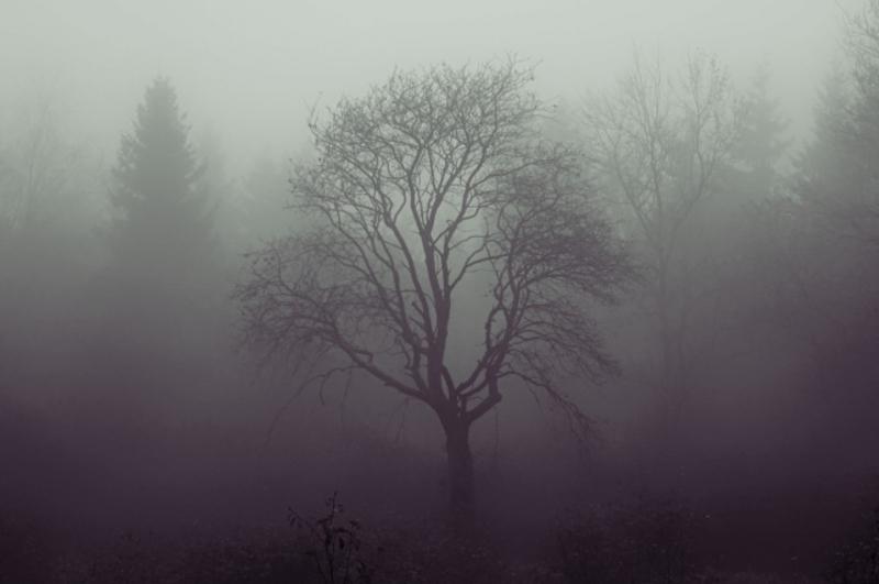 Хмельничан попереджають про густий туман