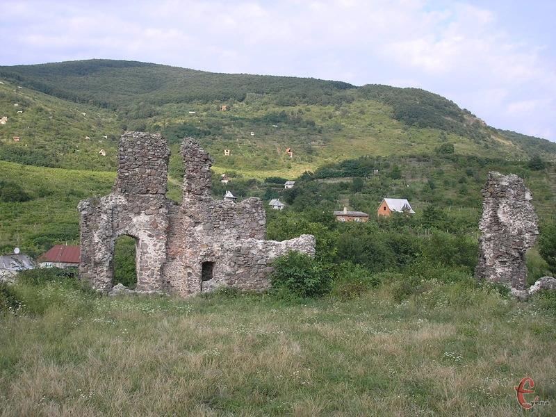 Пагорби навколо замкових руїн вкриті виноградниками