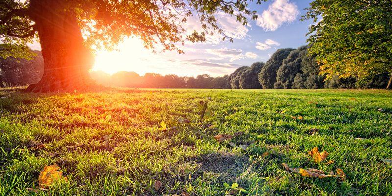 Перші вихідні осені на Хмельниччині будуть теплими