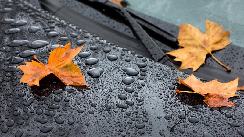 До мокрого та вітряного стану приєднається ще й подальше похолодання