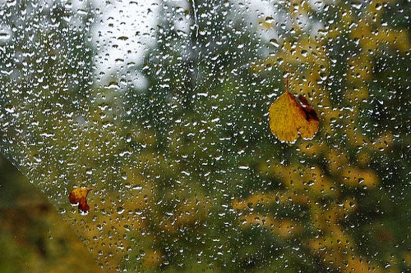 Осінь зустрачає першими дощами