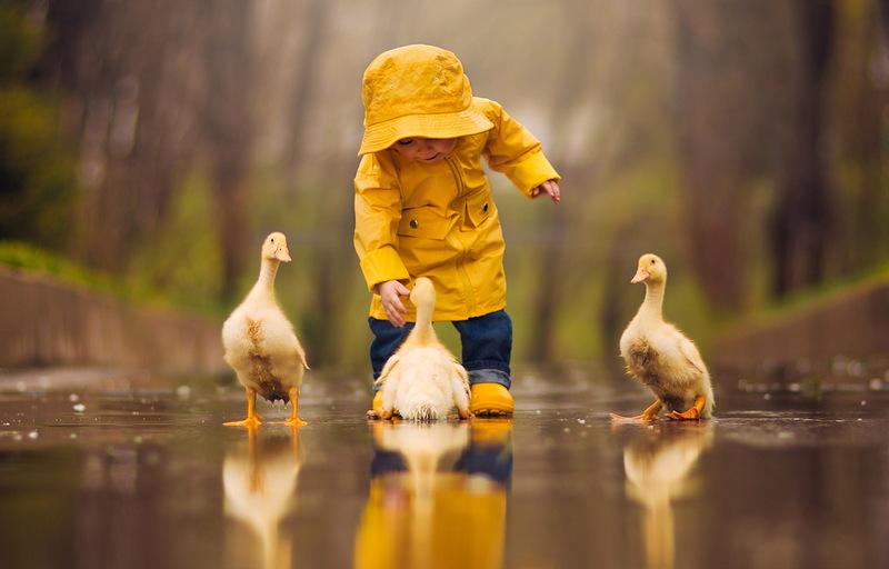 Синоптики часто помиляються, а тому, якщо сьогодні й буде дощ, то нехай він стане лагідним та літнім