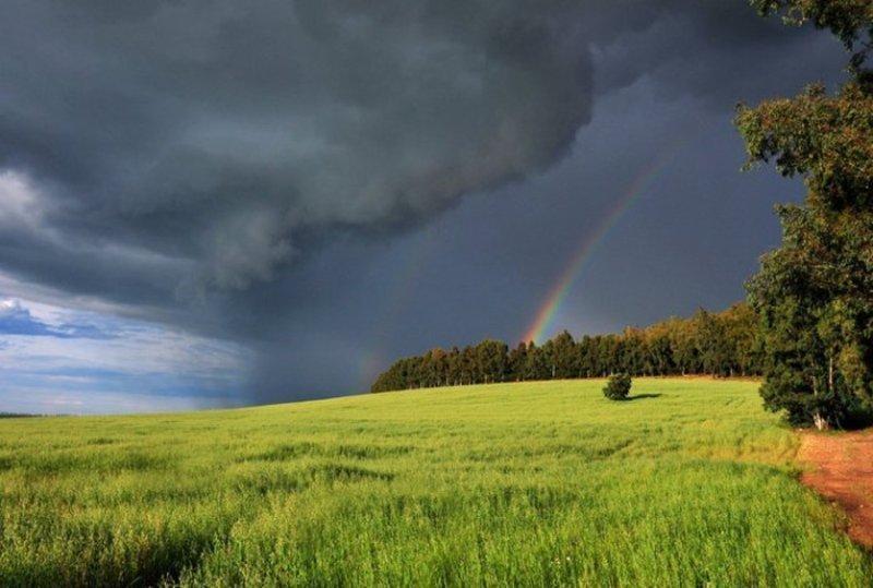 Думки щодо нинішнього дощу в синоптиків розходяться