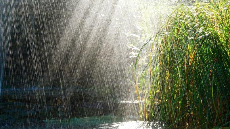 Синоптики прогнозують спеку і грози