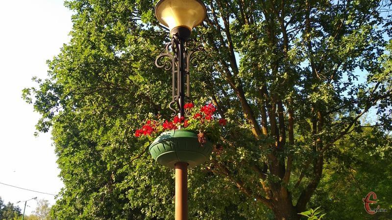 21 червня, за прогнозами, на Хмельниччині буде спекотно та без опадів