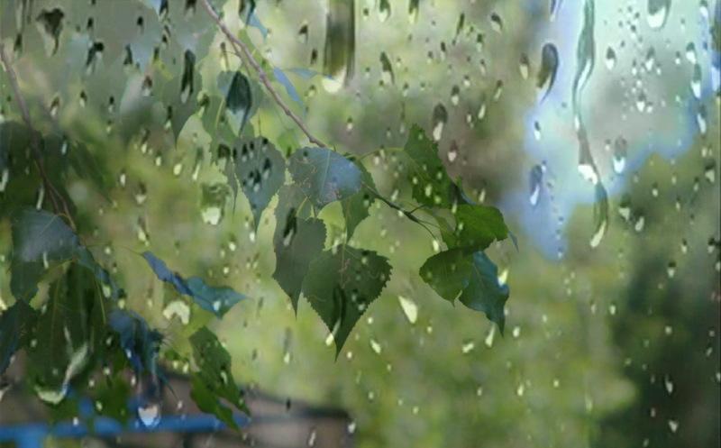 11 липня прогнозують дощі з грозами на більшій території Хмельницької області