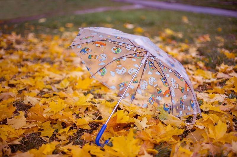 Дощі мають відступити, а тепло поступово повернутися