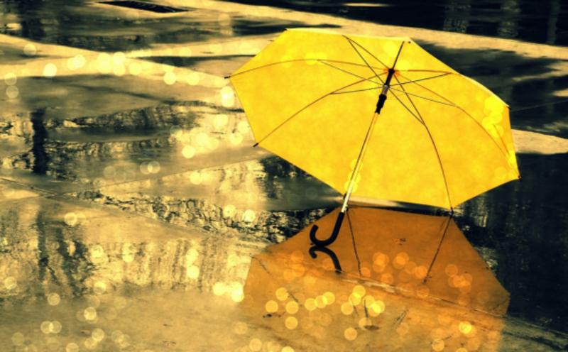 Дощі пройдуть на всій території області.