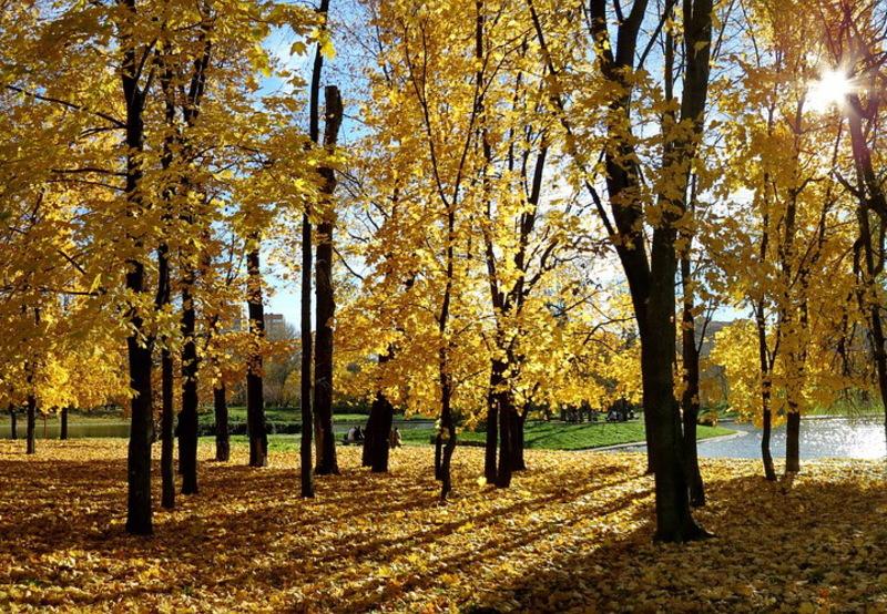 Сьогодні на Хмельниччині прогнозують теплий день, але навіть для вересня, його можна назвати прохолодним