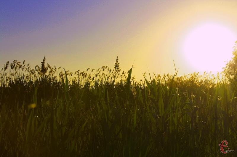 30 травня, проонозують, стане черговим спекотним днем