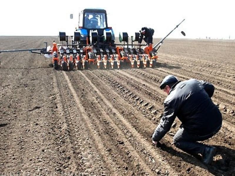 Сільськогосподарська продукція України, сьогодні користується найбільшим попитом на ринку експорту
